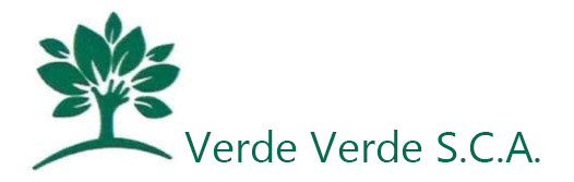 Verde Verde Logo